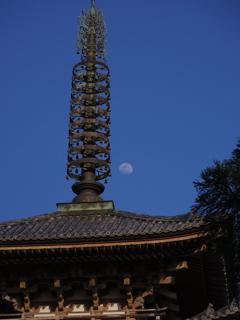 塔に出る月