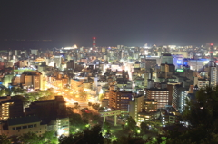 The Kagoshima night
