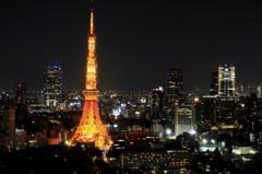 都会らしい夜景