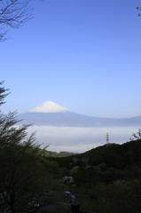 努力の富士山