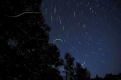 星とホタルのコラボレーション