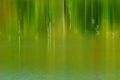 Various green stories