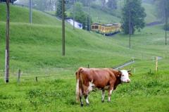 スイス ユングラウ登山鉄道 - 2
