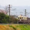 琴電レトロ電車 (1)