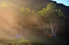 朝靄の高原キャンプ