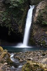 ハイコモチシダの滝