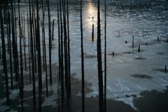 薄陽の氷湖