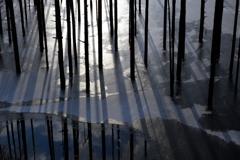 冬翳と冬の窓
