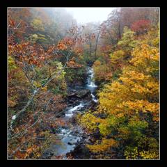 秋暮れの渓