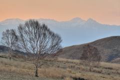 春遠からじ霧ヶ峰高原