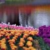 七色ガーデン