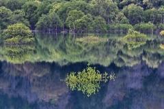 浮織の白川湖