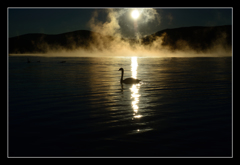煌然の朝靄(こうぜんのあさもや)