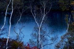 月影の高原池