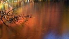 赤朽葉色のみちのく池