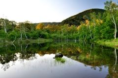 初夏の高原池