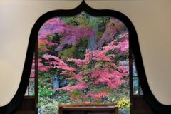 禅門の優美