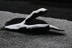 立ち枯れ木の語り部(もがき)