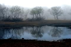 銀灰色の朝