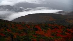 蔵王錦と滝雲