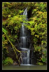 奥入瀬千筋の滝