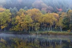 霧たなびく木戸池