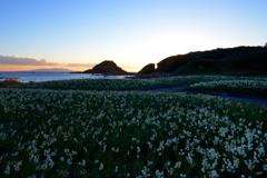 ナルシスの丘の夜明けⅡ