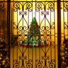 Merry Christmas (^^♪