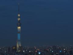 Blue Light Tokyo