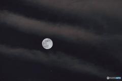 予報ハズレの満月