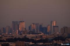 夕照の摩天楼