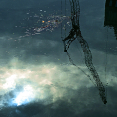 水様-213/雲からの啓示への反応