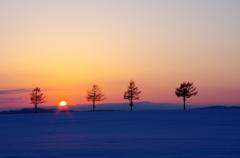 冬のメルヘン