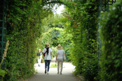 greenwalk