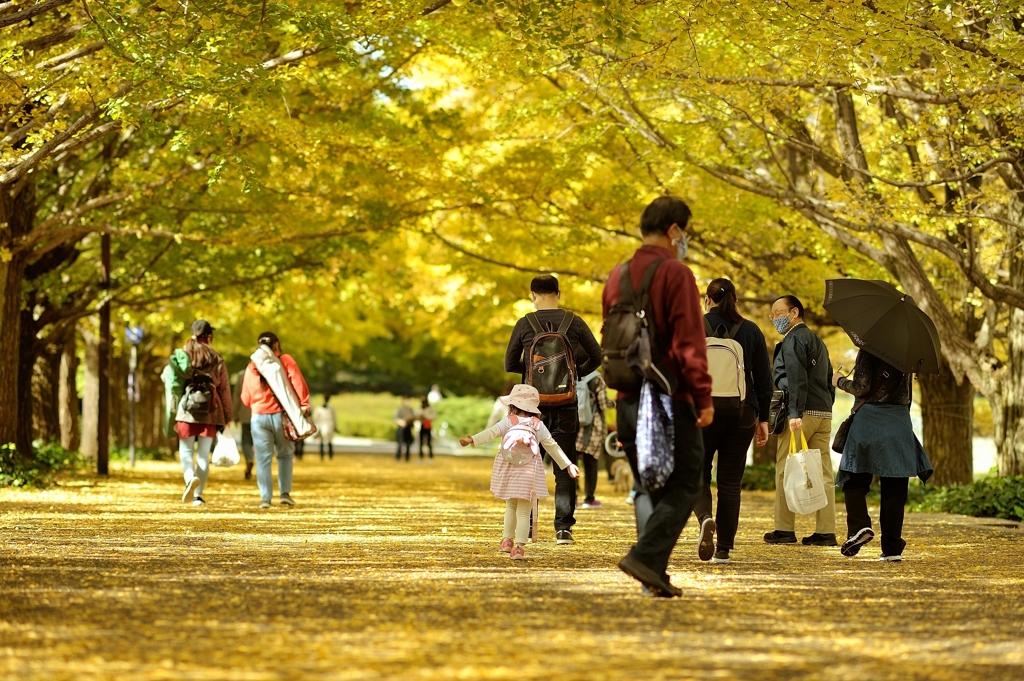 autumn for tokyoites 2020