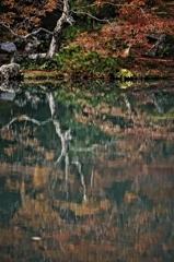 天龍寺の秋