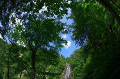 幸兵衛の滝