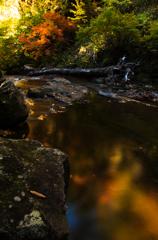 2012立又渓谷秋Ⅶ・二の滝