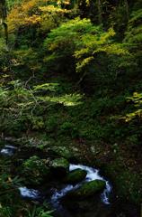 太平山奥岳登山2013秋・丸舞コースⅣ