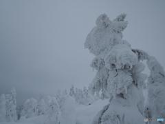 スノーゴースト