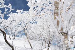 姫神山霧氷Ⅴ