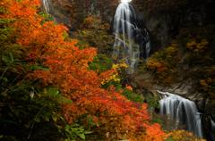 安の滝2013秋Ⅱ