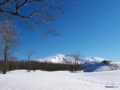 冬師散策Ⅲ