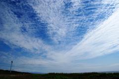 雲ネットⅡ