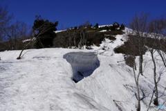 山頂へ・春の道
