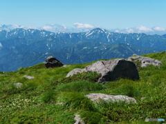 朝日連峰を望む