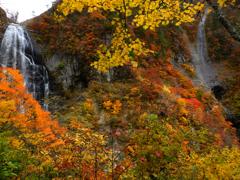安の滝2013秋Ⅲ