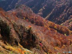 秋陽射す谷Ⅱ