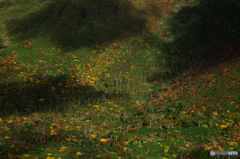 山裾の陰影
