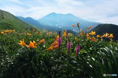 花と山とⅠ